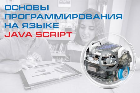 Основы программирования на языке Java Script для использования в образовательном процессе